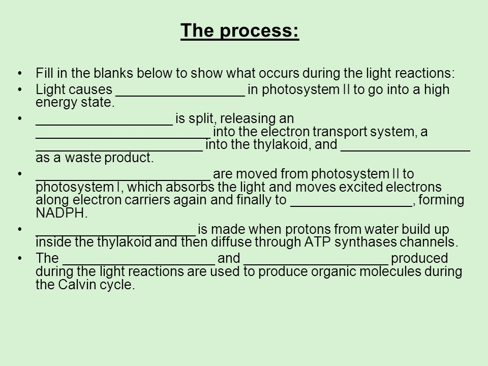 The process:Fill in the blanks below to show what occurs during the light reactions: