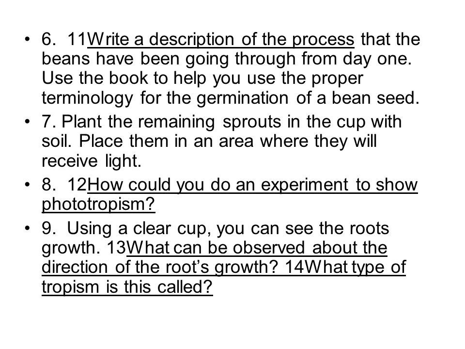6. 11Write a description of the process that the beans have been going through from day one. Use the book to help you use the proper terminology for the germination of a bean seed.