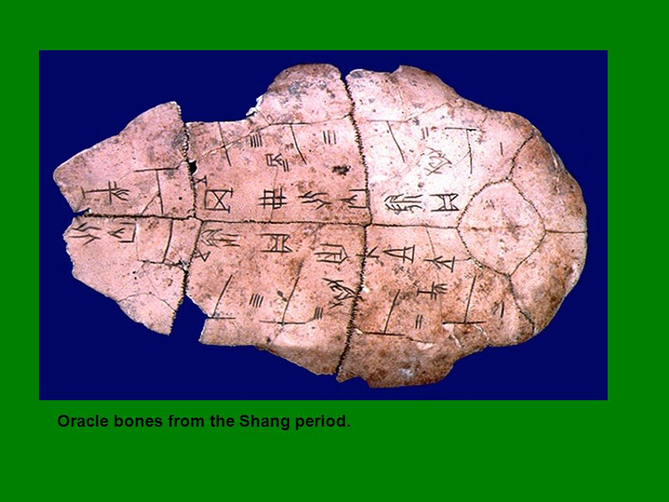 Oracle bones from the Shang period.