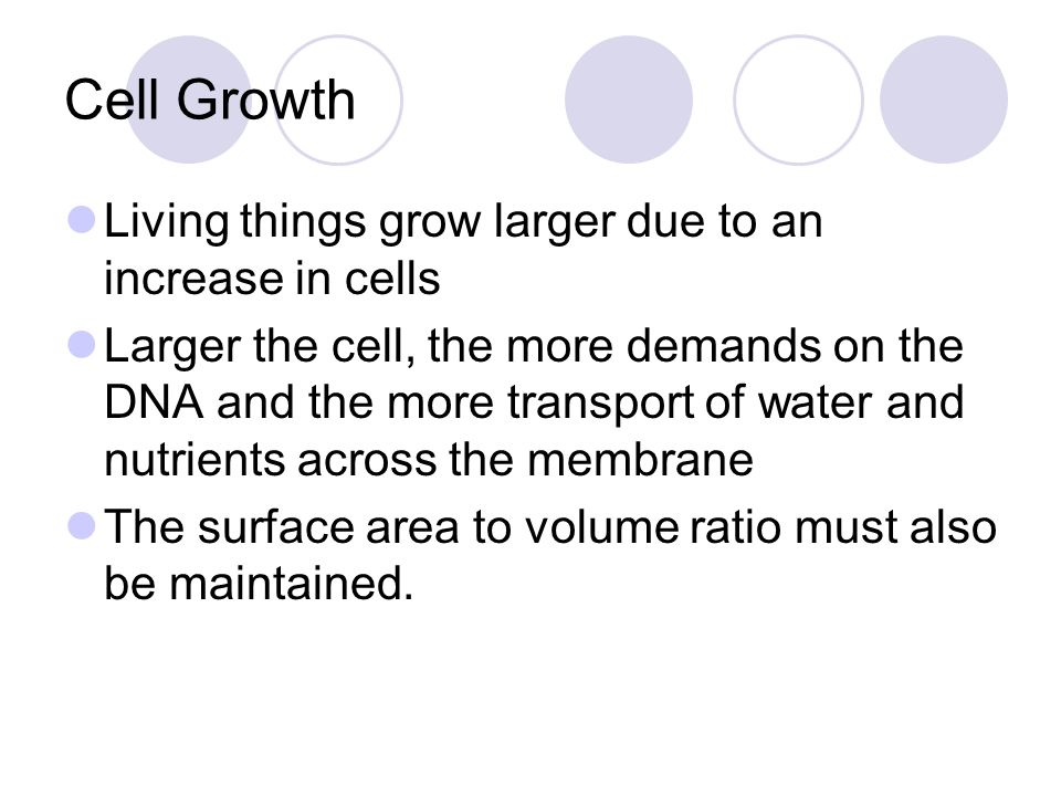 Cell Growth Living things grow larger due to an increase in cells