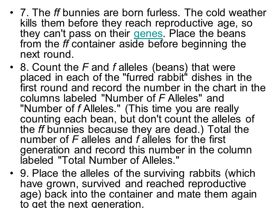 7. The ff bunnies are born furless