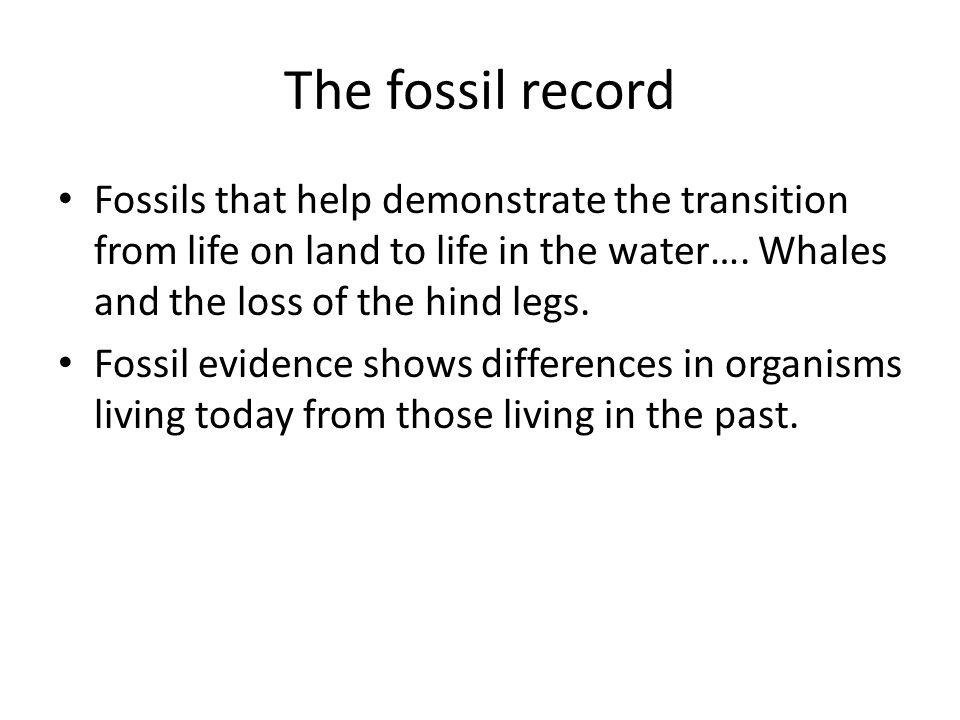 The fossil record Fossils that help demonstrate the transition from life on land to life in the water…. Whales and the loss of the hind legs.