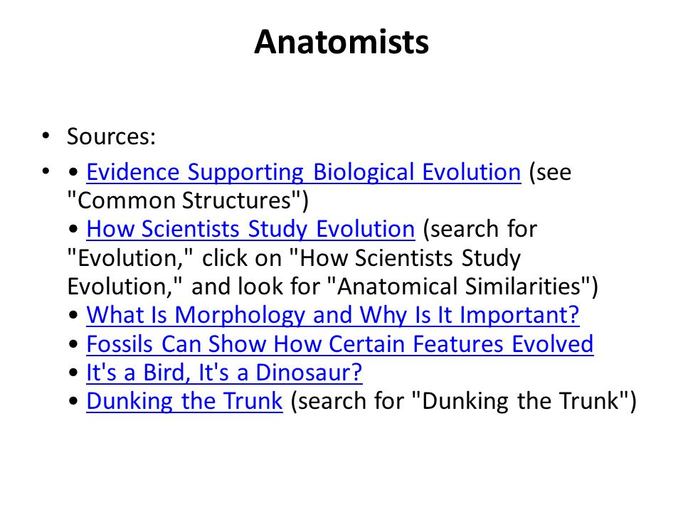 Anatomists Sources: