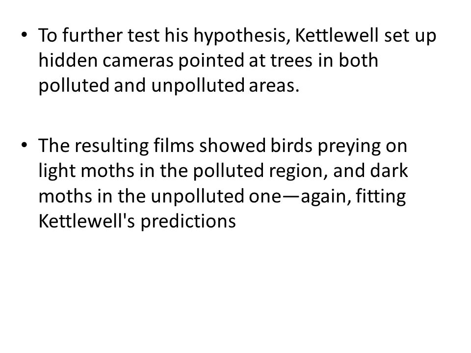 To further test his hypothesis, Kettlewell set up hidden cameras pointed at trees in both polluted and unpolluted areas.