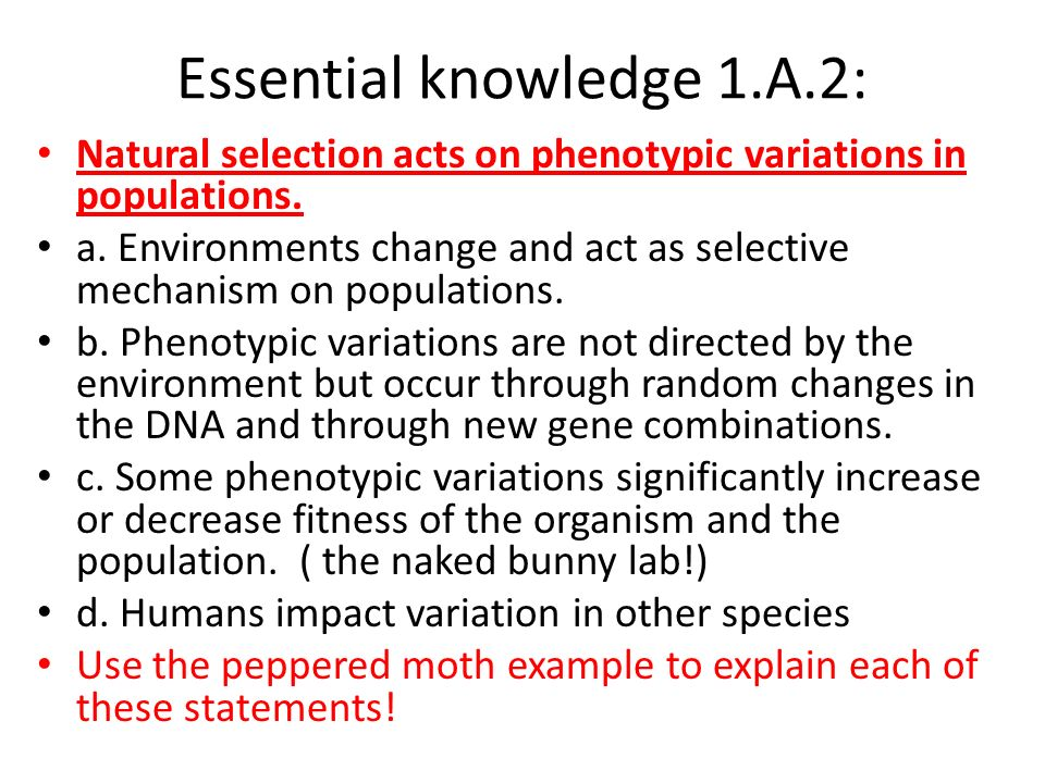 Essential knowledge 1.A.2: