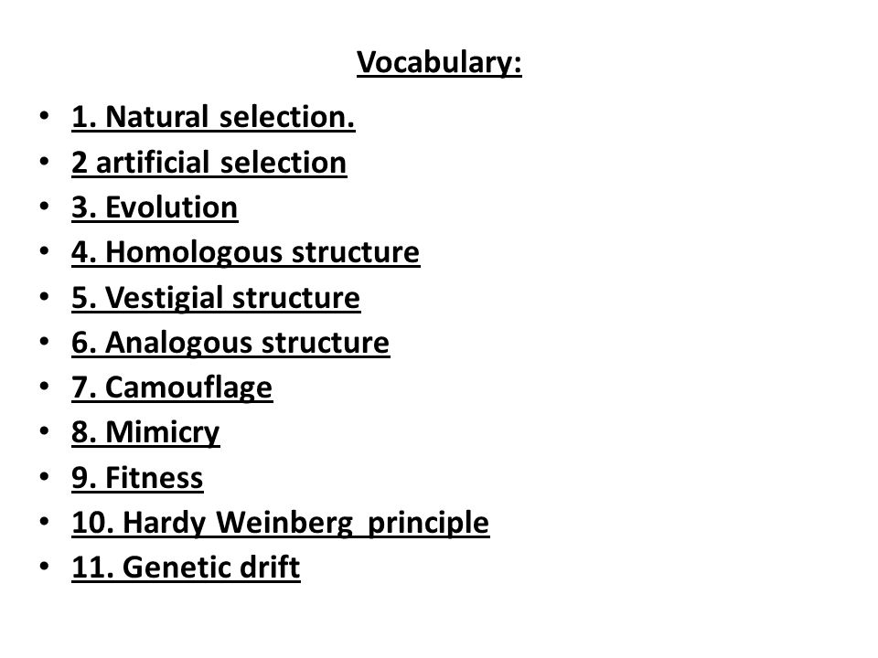Vocabulary: 1. Natural selection. 2 artificial selection. 3. Evolution. 4. Homologous structure.