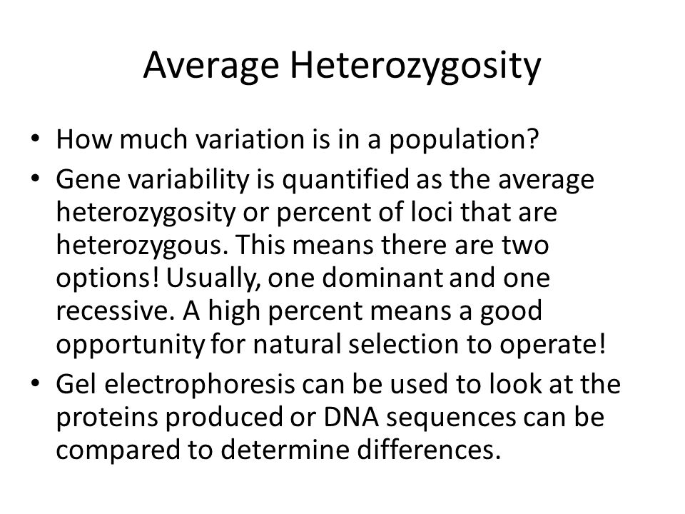Average Heterozygosity