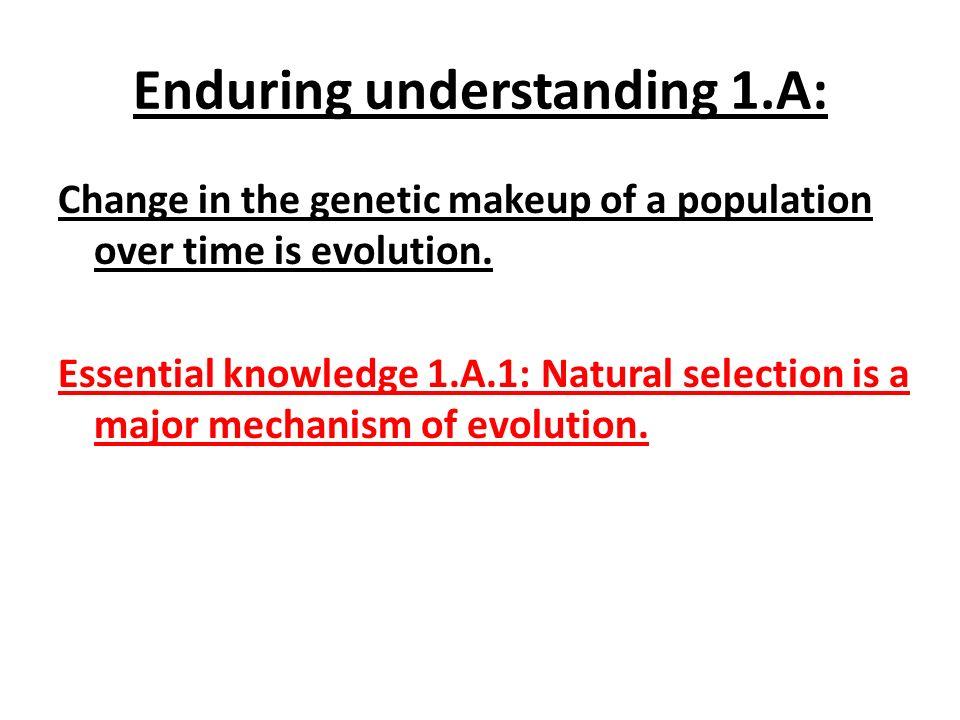 Enduring understanding 1.A: