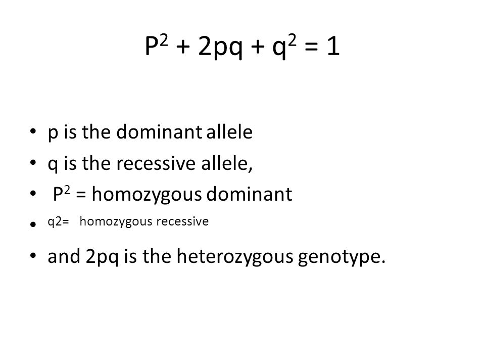 P2 + 2pq + q2 = 1 p is the dominant allele q is the recessive allele,