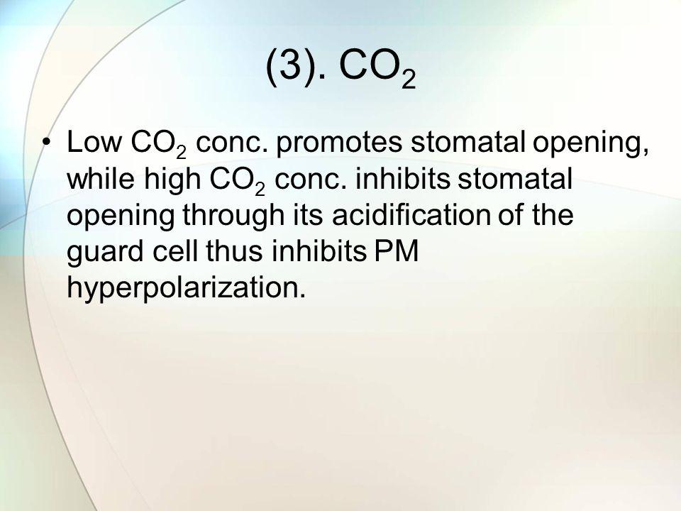 (3). CO2
