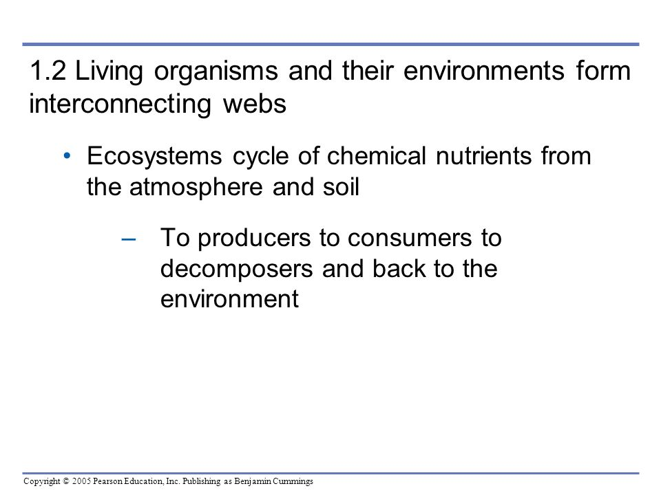 1.2 Living organisms and their environments form interconnecting webs