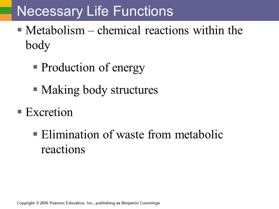 Necessary Life Functions