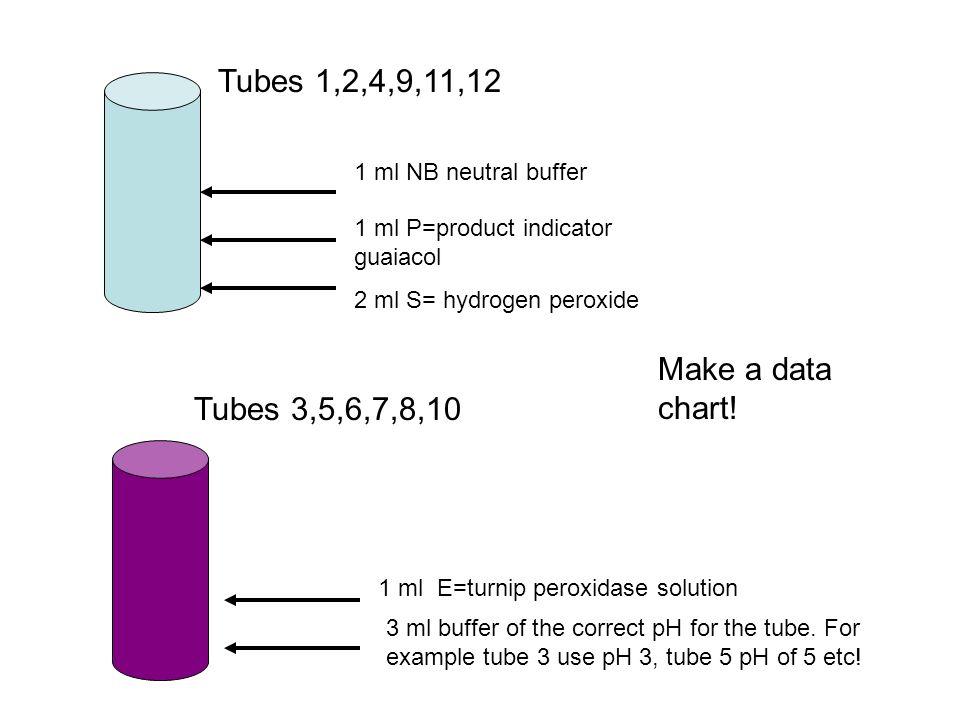 Tubes 1,2,4,9,11,12 Make a data chart! Tubes 3,5,6,7,8,10