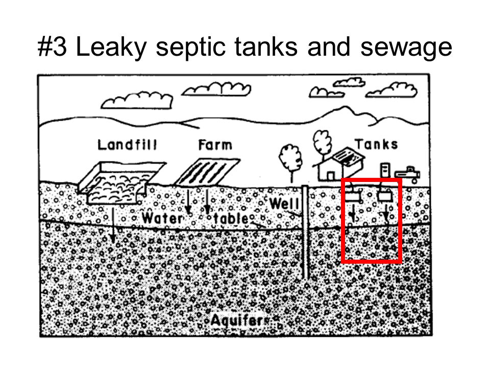 #3 Leaky septic tanks and sewage