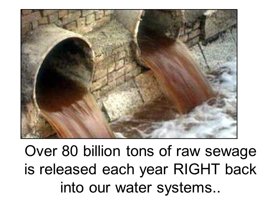 Over 80 billion tons of raw sewage is released each year RIGHT back into our water systems..