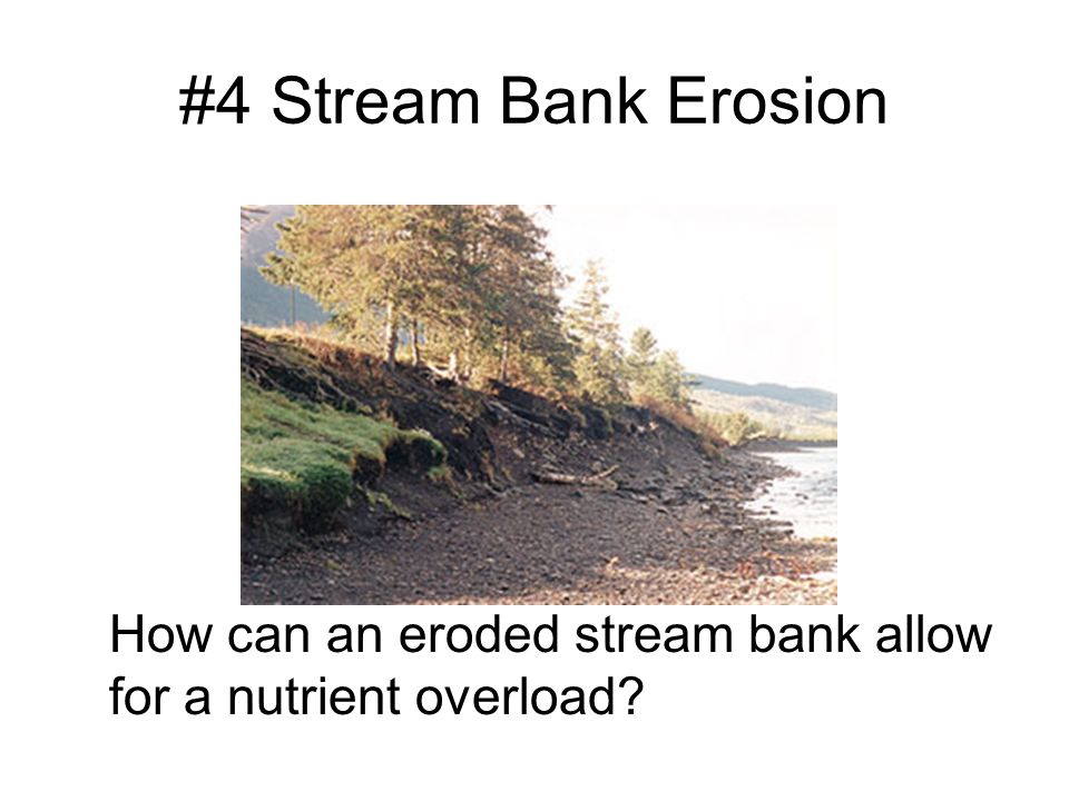 #4 Stream Bank Erosion How can an eroded stream bank allow for a nutrient overload