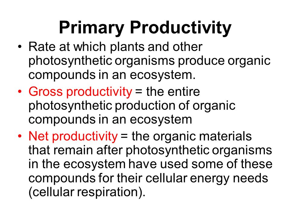 Primary Productivity Rate at which plants and other photosynthetic organisms produce organic compounds in an ecosystem.