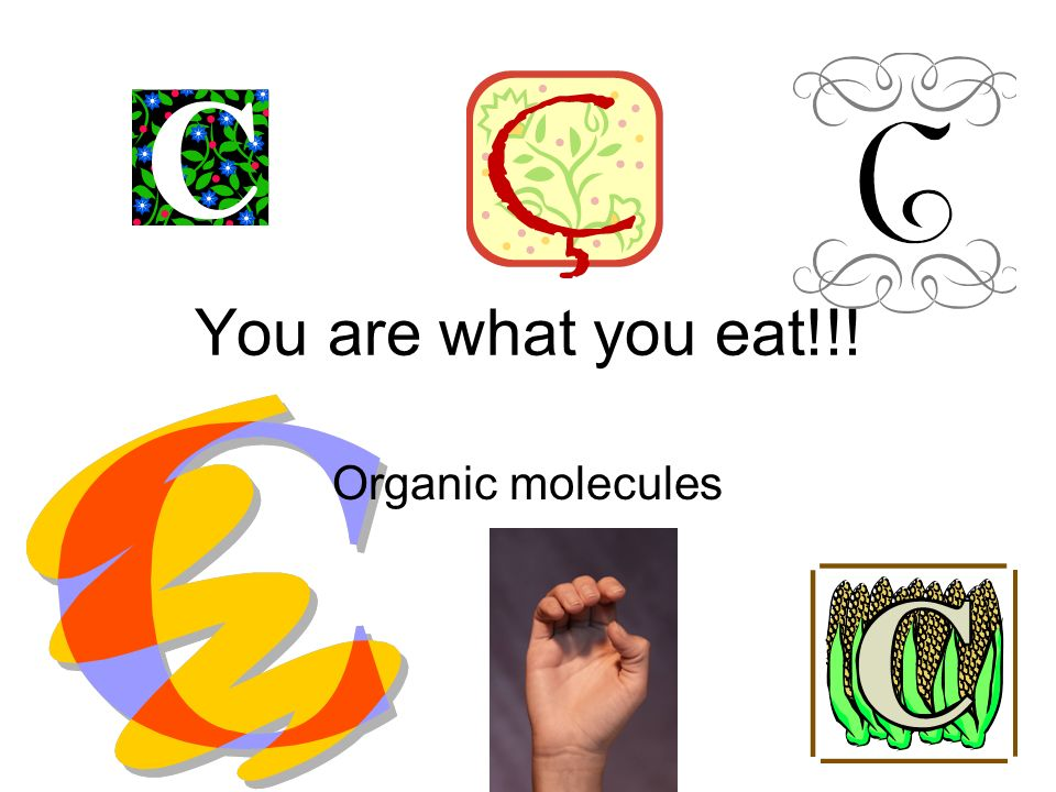 You are what you eat!!! Organic molecules