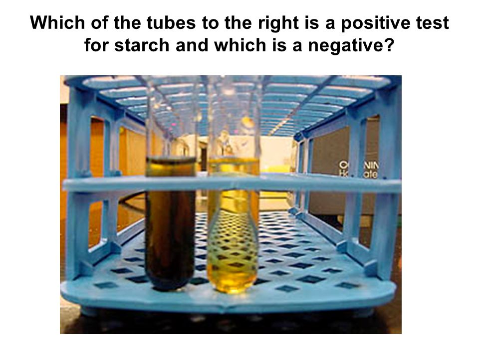 Which of the tubes to the right is a positive test for starch and which is a negative