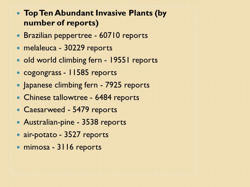 Top Ten Abundant Invasive Plants (by number of reports)