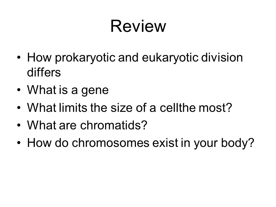 Review How prokaryotic and eukaryotic division differs What is a gene