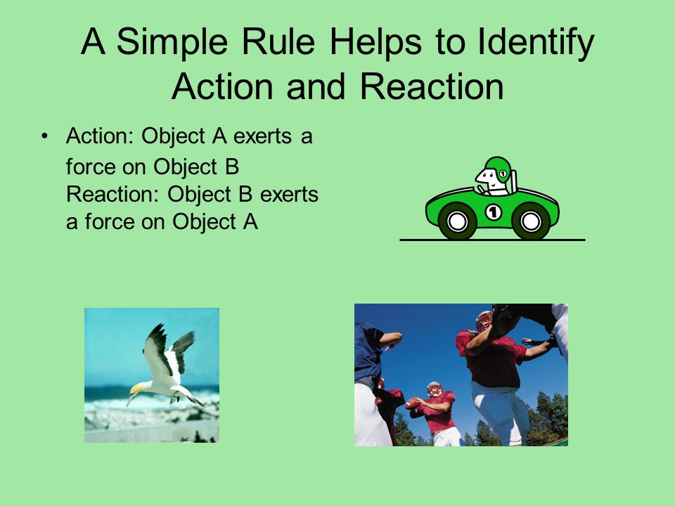 A Simple Rule Helps to Identify Action and Reaction