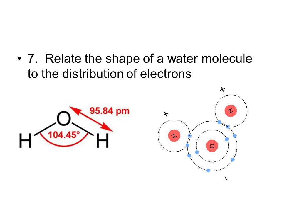7. Relate the shape of a water molecule to the distribution of electrons