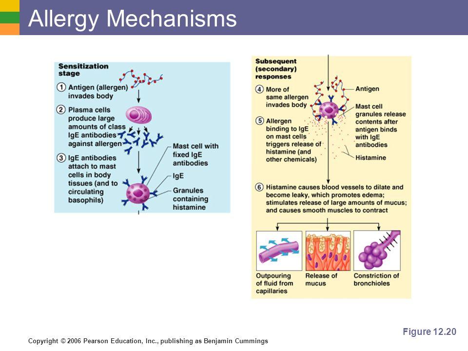 Allergy Mechanisms Figure 12.20