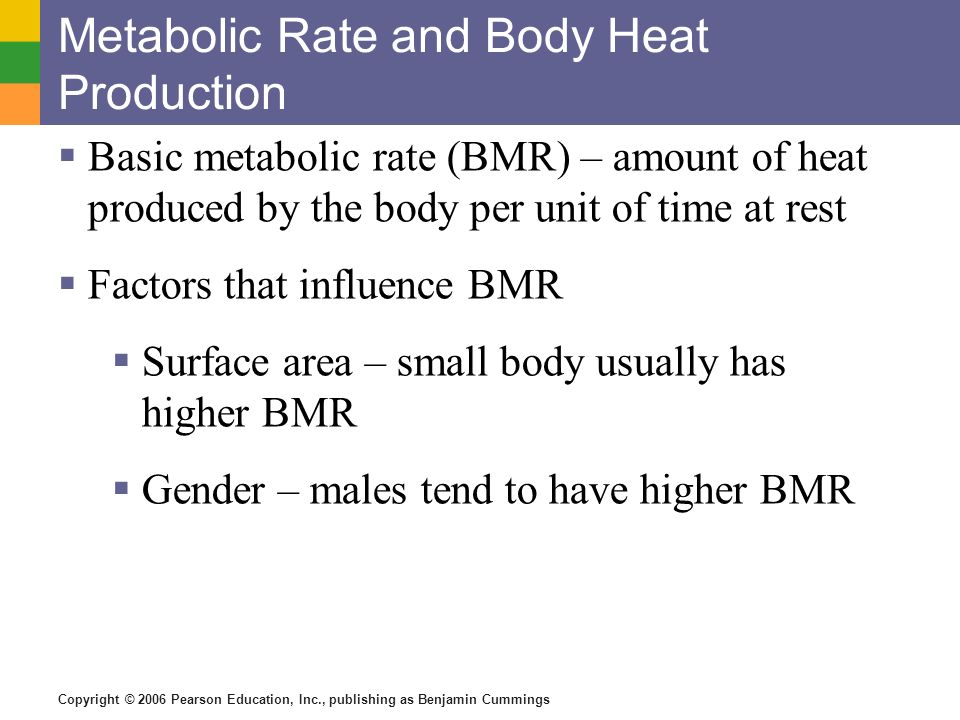 Metabolic Rate and Body Heat Production