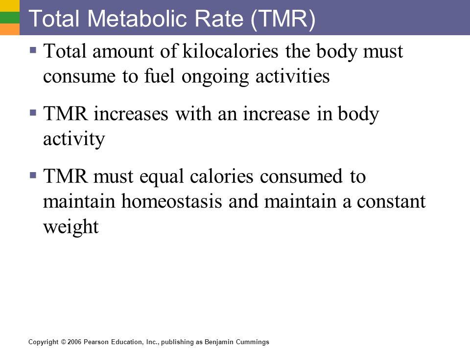 Total Metabolic Rate (TMR)