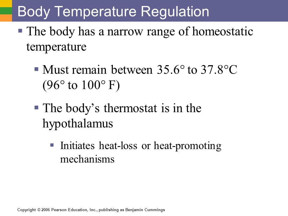 Body Temperature Regulation