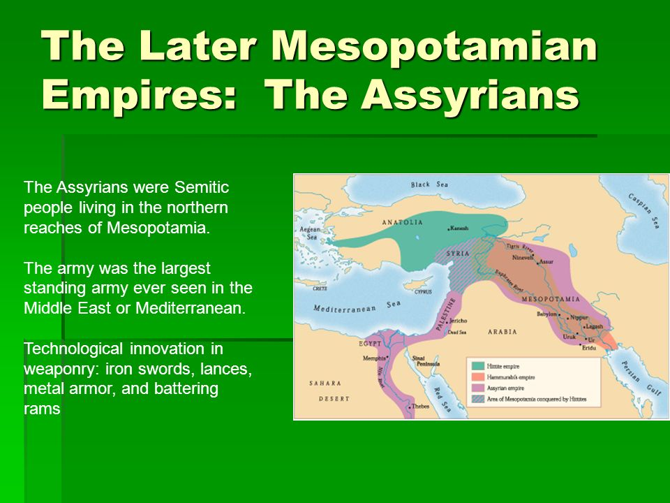 The Later Mesopotamian Empires: The Assyrians