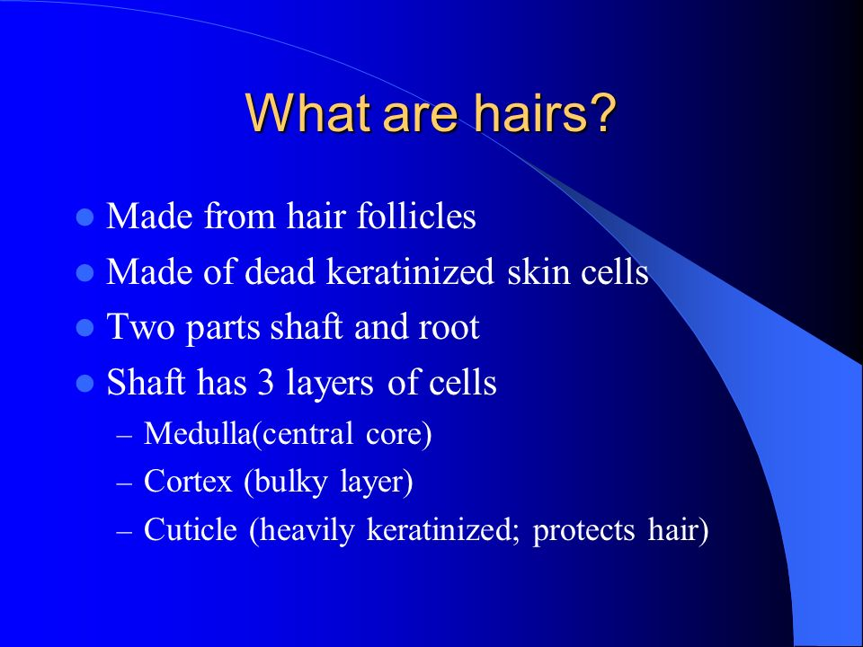 What are hairs Made from hair follicles