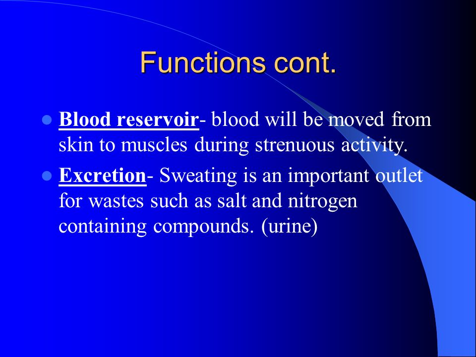 Functions cont. Blood reservoir- blood will be moved from skin to muscles during strenuous activity.