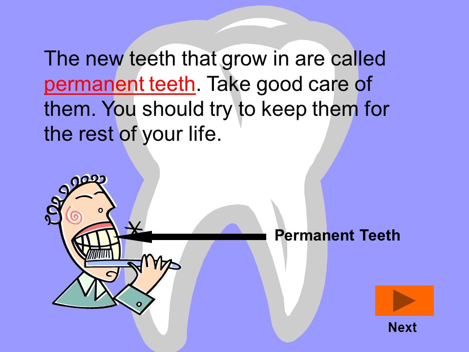 The new teeth that grow in are called permanent teeth