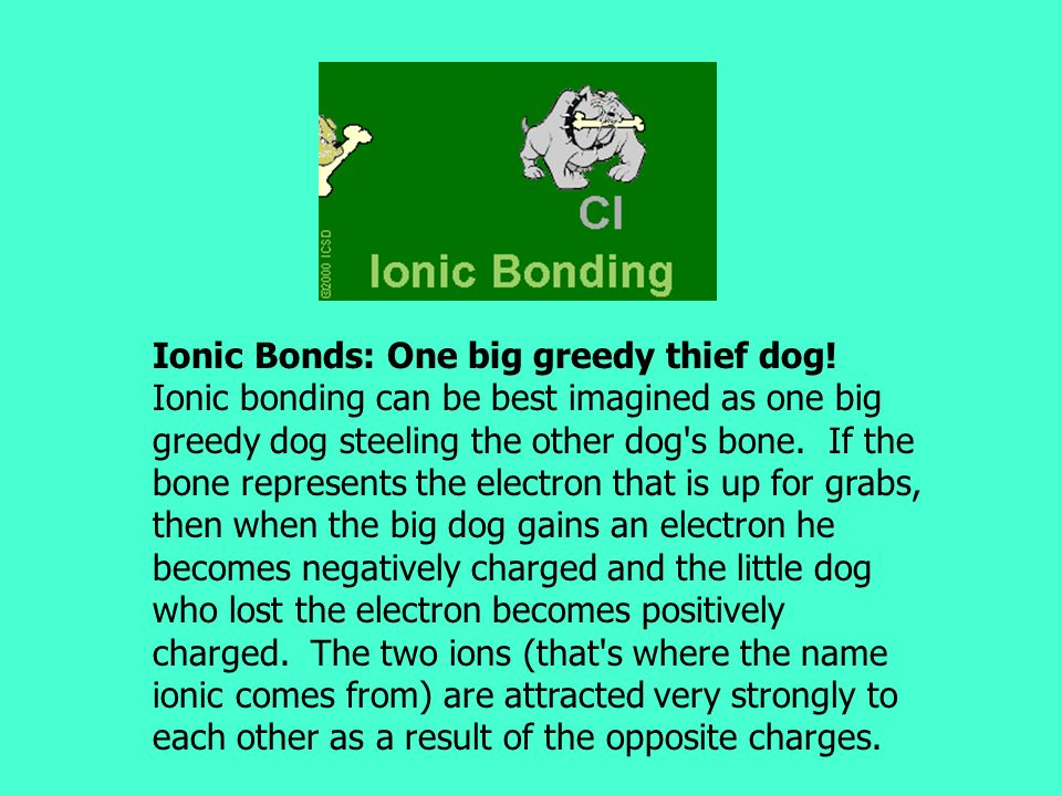 Ionic Bonds: One big greedy thief dog
