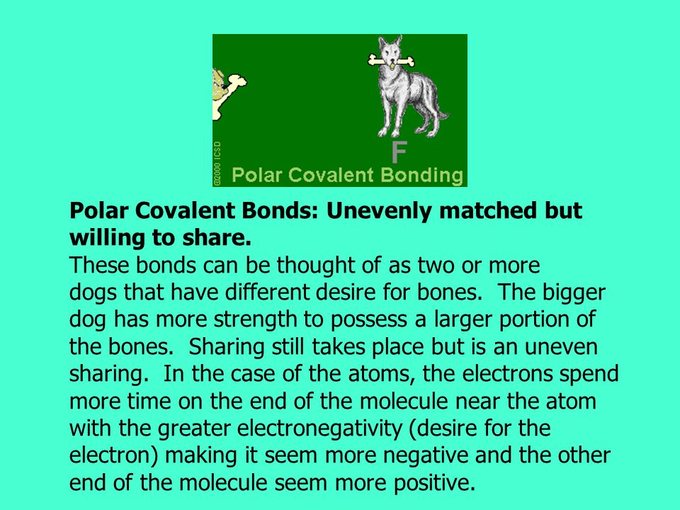 Polar Covalent Bonds: Unevenly matched but willing to share