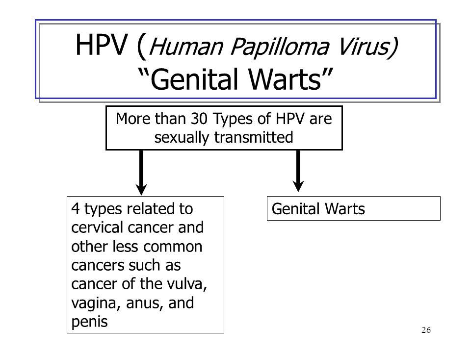 HPV (Human Papilloma Virus) Genital Warts