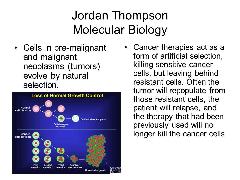 Jordan Thompson Molecular Biology
