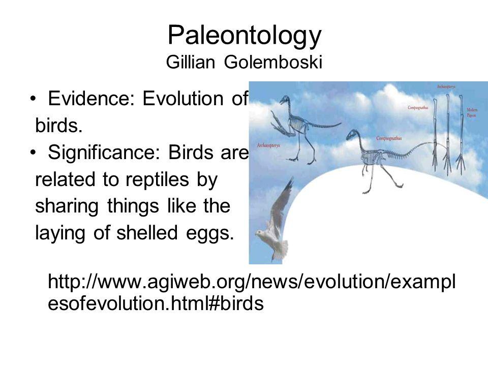 Paleontology Gillian Golemboski