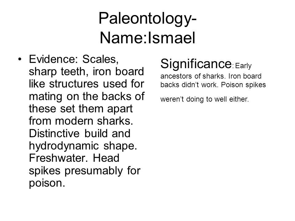 Paleontology- Name:Ismael