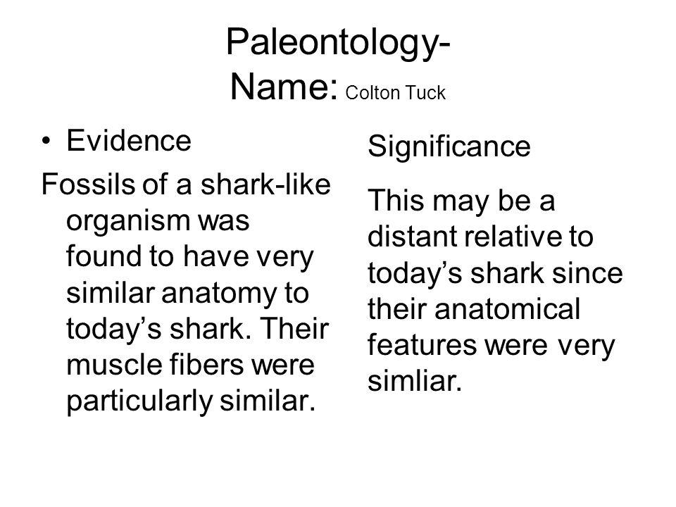 Paleontology- Name: Colton Tuck