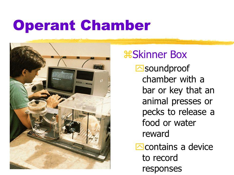 Operant Chamber Skinner Box