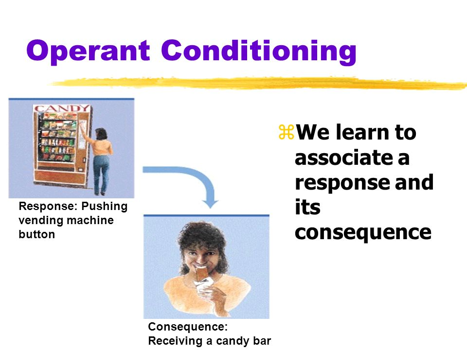 Operant Conditioning Response: Pushing. vending machine. button. Consequence: Receiving a candy bar.
