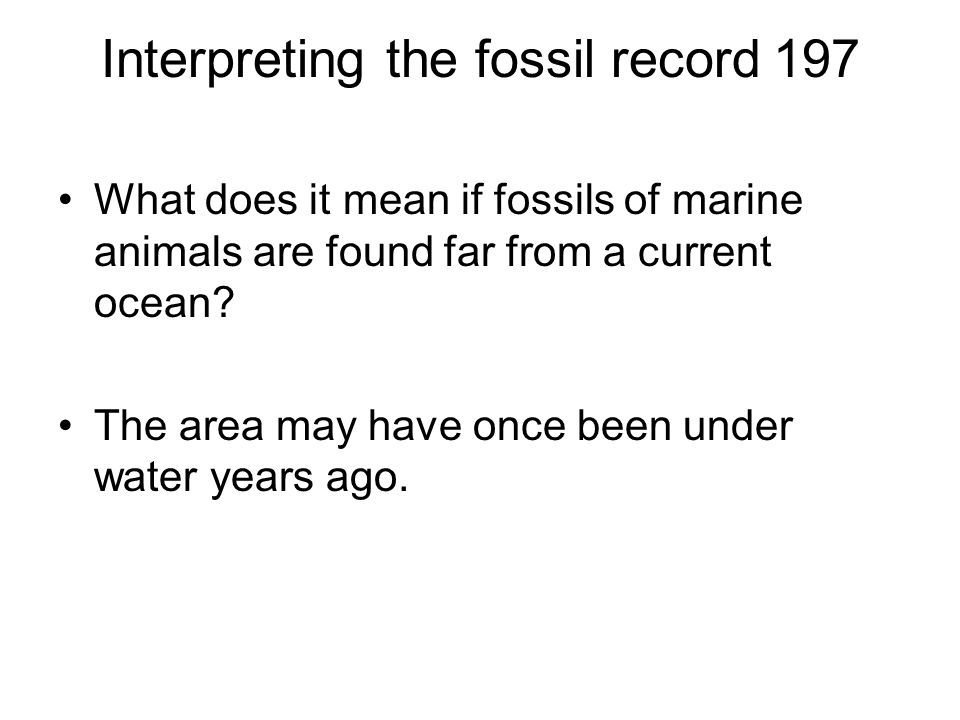 Interpreting the fossil record 197