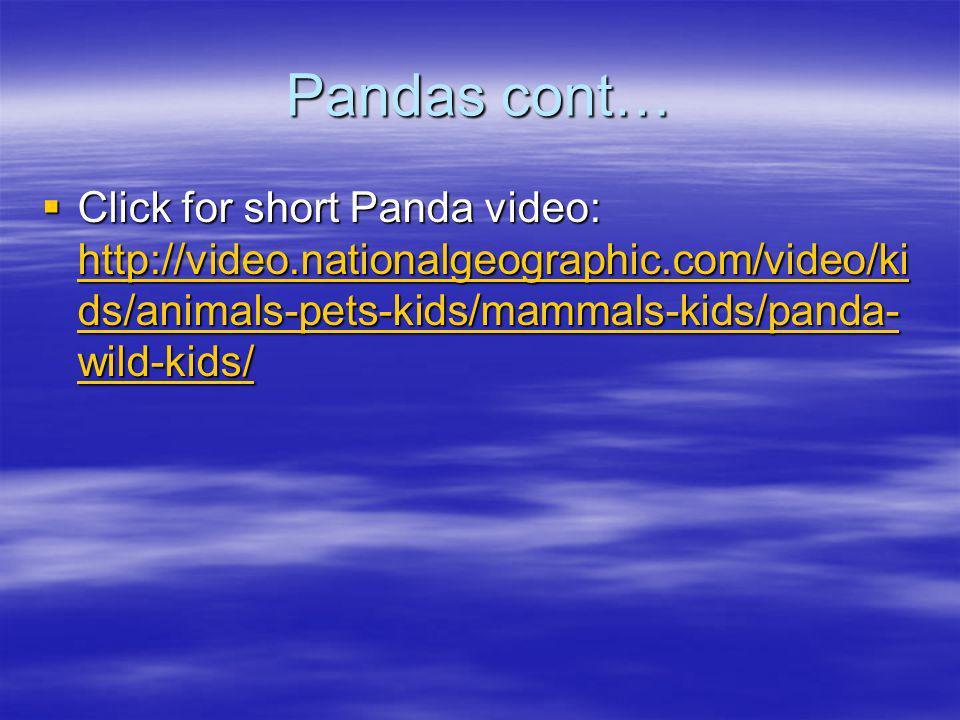 Pandas cont… Click for short Panda video: http://video.nationalgeographic.com/video/kids/animals-pets-kids/mammals-kids/panda-wild-kids/