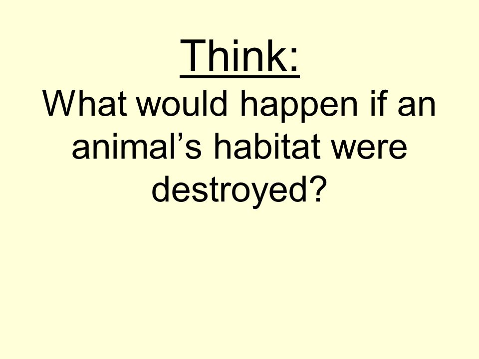 Think: What would happen if an animal's habitat were destroyed