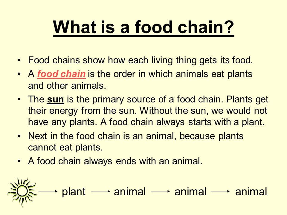 plant animal animal animal