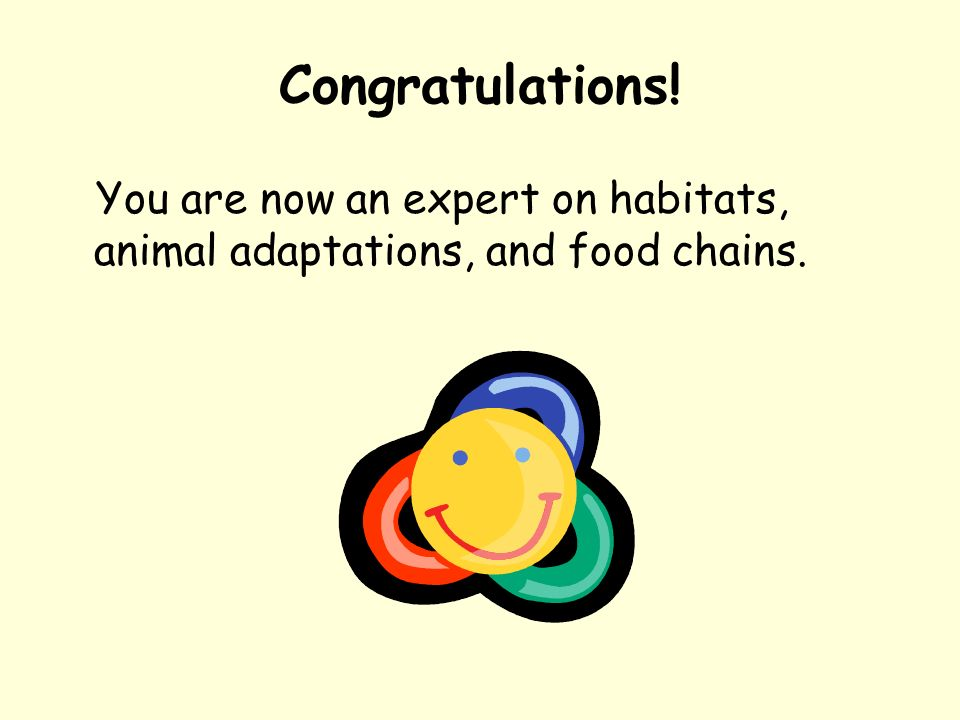 Congratulations! You are now an expert on habitats, animal adaptations, and food chains.