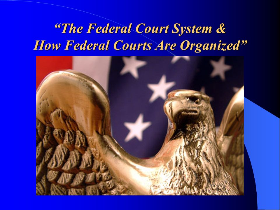 The Federal Court System & How Federal Courts Are Organized